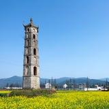 Pagodas y flor del canola Fotos de archivo
