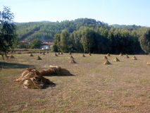 El paisaje rural del mediterráneo Foto de archivo libre de regalías