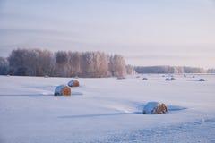 El paisaje rural siberiano del invierno con el heno rueda en la ensenada del campo Foto de archivo libre de regalías