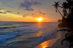 El paisaje un océano protegido puesta del sol de la India en Sri Lanka fotografía de archivo