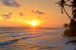 El paisaje un océano protegido puesta del sol de la India en Sri Lanka fotografía de archivo libre de regalías