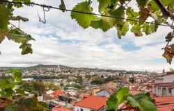 El paisaje urbano de la ciudad histórica Tbilisi en el marco de la uva se va, país de Georgia Foto de archivo libre de regalías