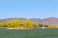 El palacio de verano en melocotón de la primavera de Pekín foto de archivo