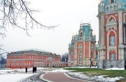 El palacio y el Tsaritsyno grandes parquean panorama en Moscú Imágenes de archivo libres de regalías