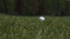 El palillo en la pelota de golf almacen de metraje de vídeo