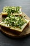 El pan con queso amarillo, la mayonesa y el berro adornan Imagenes de archivo