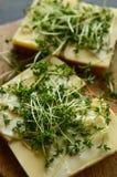 El pan con queso amarillo, la mayonesa y el berro adornan Fotografía de archivo