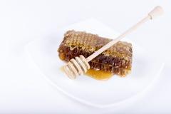 El panal con la miel y la miel se pegan en el fondo blanco Fotos de archivo libres de regalías