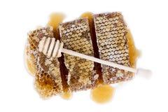 El panal con la miel y la miel se pegan en el fondo blanco Fotos de archivo
