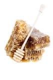 El panal con la miel y la miel se pegan en el fondo blanco Imagen de archivo
