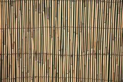 El panel de bambú de la cerca Fotos de archivo