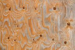 El panel de madera con la textura creada por los nudos y las venas Foto de archivo libre de regalías