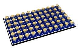 El panel solar con los cubos llenos de monedas Fotos de archivo libres de regalías