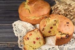 El panettone es el postre italiano tradicional para la torta de la Navidad o de Pascua imágenes de archivo libres de regalías