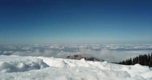 El panorama de la nieve, de las nubes y de los árboles de pino Los cristales de la nieve son visibles almacen de video