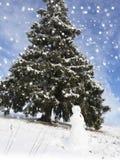 El panorama del bosque del invierno con los árboles cubrió nieve Imagenes de archivo
