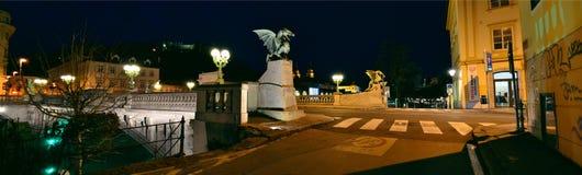 El panorama del puente del dragón Foto de archivo libre de regalías
