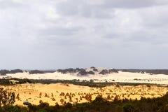 El panorama surrealista de las dunas de arena amarillas y blancas en los pináculos abandona, Australia Fotografía de archivo libre de regalías