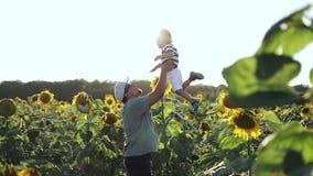 El papá y el hijo se divierten en el campo con los girasoles amarillos en el verano almacen de video