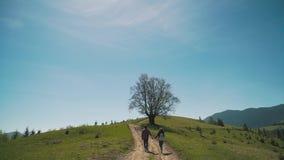 El par con las mochilas sube la colina metrajes