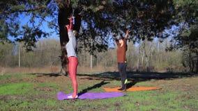 El par de mujeres que ejercitan aptitud de la yoga se divierte en Forest Park almacen de metraje de vídeo