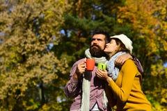 El par en amor se sienta en el parque que sostiene las tazas de té Imagenes de archivo