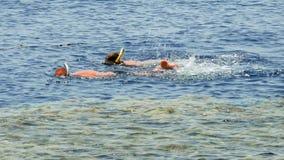 El par está buceando en el centro turístico tropical del mar metrajes