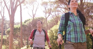 El par está caminando en el bosque almacen de metraje de vídeo