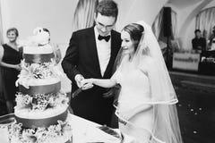 El par está cortando la torta sabrosa adornada con el adorno de los cisnes, perno Imágenes de archivo libres de regalías