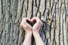El par está poniendo sus manos en árbol en una forma del corazón Fotografía de archivo libre de regalías