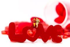El par miniatura, sentándose en el texto del AMOR es color rojo de madera, usando como amor de dos personas, concepto de la tarje Fotos de archivo libres de regalías