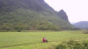 El par monta la pequeña motocicleta a lo largo del camino de tierra estrecho almacen de video