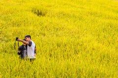 El par toma el selfie en el campo de oro del arroz de Thailan septentrional Foto de archivo