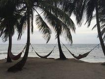 El paraíso está en el mar del Caribe Foto de archivo libre de regalías
