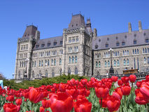 El parlamento canadiense con los tulipanes rojos alrededor Fotografía de archivo