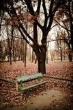 El parque Fotografía de archivo libre de regalías