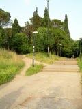 El parque al aire libre de la calzada peatonal con los árboles cultiva un huerto en la capital c Fotografía de archivo