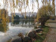 El parque botánico fotos de archivo