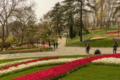 El parque de Emirgan es un parque urbano hist?rico situado en el Emirgan en Estambul internacional imágenes de archivo libres de regalías