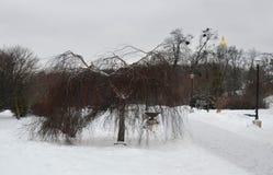 El parque de gloria eterna en Kyiv, Ucrania Imágenes de archivo libres de regalías