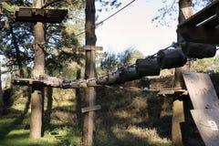 El parque de la aventura en el bosque Imagen de archivo