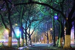 El parque de la ciudad de la noche enciende el fondo del callejón Imagenes de archivo
