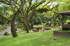 El parque de la juventud cerca del jardín botánico en Georgetown, Penang Fotografía de archivo