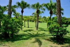 El parque de Ngoluanpi, Kenting, Taiwán Foto de archivo libre de regalías