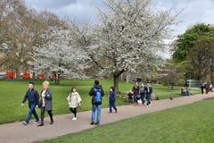 El parque de San Jaime, Londres Fotos de archivo libres de regalías