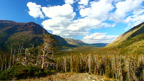 El parque del aster pasa por alto Montana almacen de video