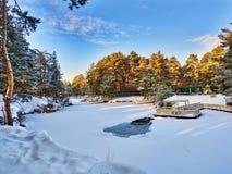 El parque del invierno en Cheliábinsk Rusia Fotografía de archivo
