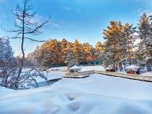 El parque del invierno en Cheliábinsk Rusia Fotografía de archivo libre de regalías