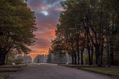 El parque del paisaje en Pavlovsk El amanecer frío Fotos de archivo libres de regalías