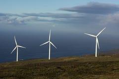 El parque eólico de Auwahi en el lado sur de Maui, Hawaii Foto de archivo libre de regalías